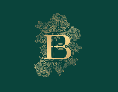 Blizzard and Breeze logo design