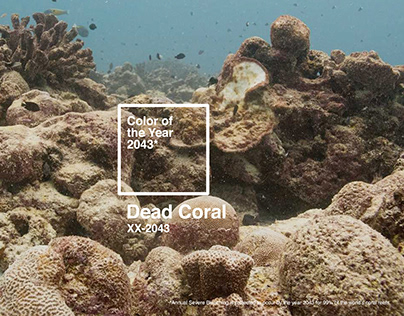 Dead Coral Color of The Year 2043