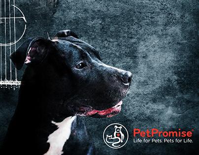 Pet Promise Fundraiser Posters