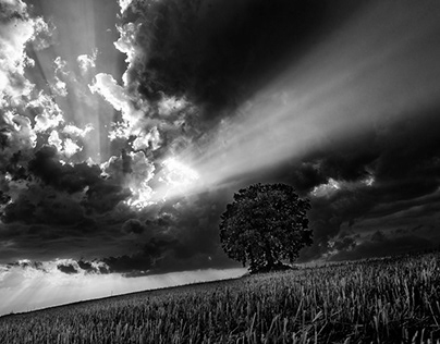 Ray of sunlight in black & white