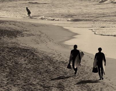 Canarian Island - Surfer in the evening sun