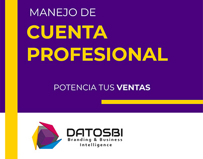DATOSBI Manejo de cuenta profesional