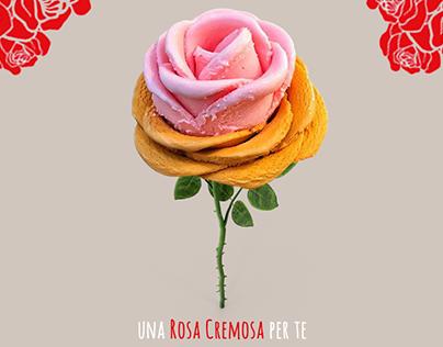 Delle Rose - Content Creation