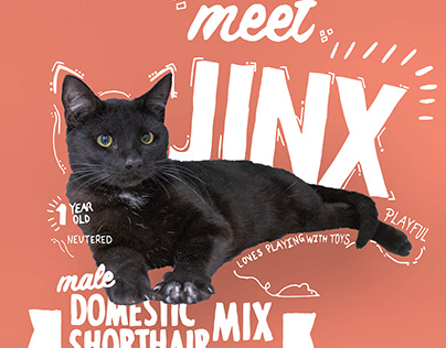 Beatrice Humane Society Promotional Posters