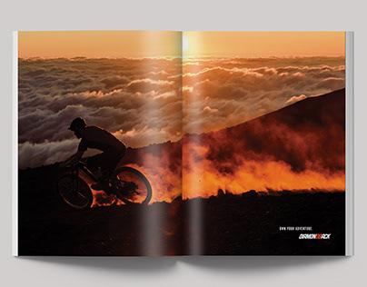 Diamondback Print Ad Campaign