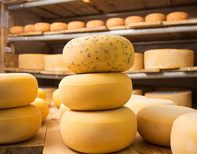 Brown's Cheese Shoot