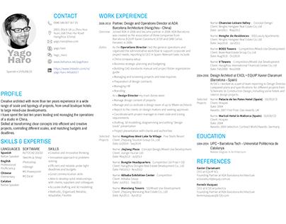 My Resume and Portfolio Condensed Version