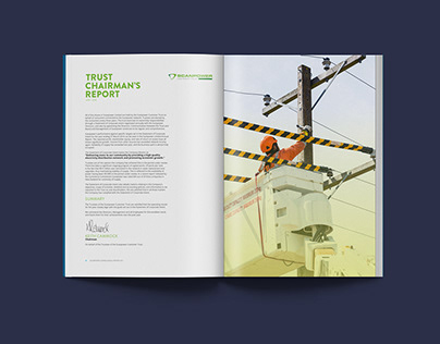 Scanpower 2016 Annual Report