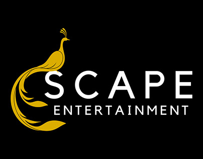 Brand Recognition for a Wedding & Entertainment Company