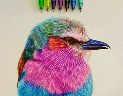 lelic bird with ballpoint pens