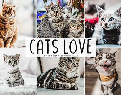 Free Cats Love Mobile & Desktop Lightroom Preset