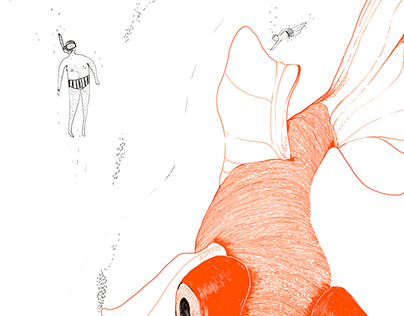 Don't Get Koi With Me | Personal Work 1/2