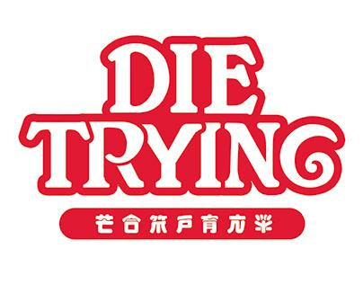 Die Trying Skateboards / 19