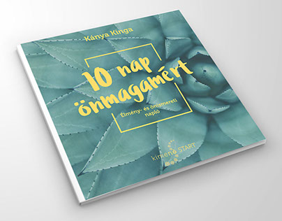 Brochure design and pagination