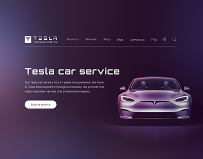 Website for Tesla car service