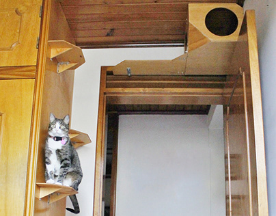Gimnasio para gatos en madera