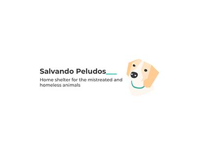 Web Redesign Salvando Peludos