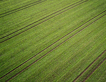 field with tracks, spring in Germany