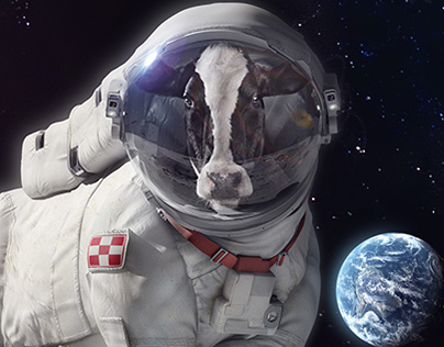 Purina - Cow on the moon Print campaign