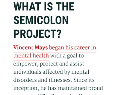 What is the semicolon project? - Vincent Mays