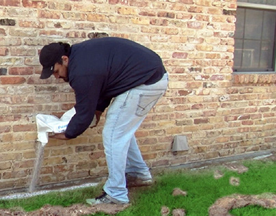 Termite Barriers Can Help Protect Your Home
