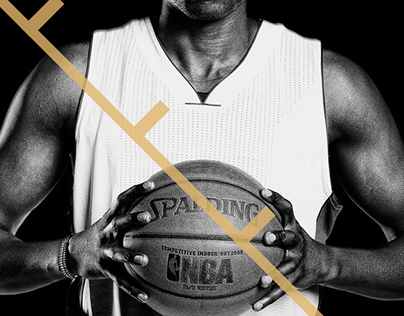 NBA Basketball : Luol Deng 800 Career Games 3D design