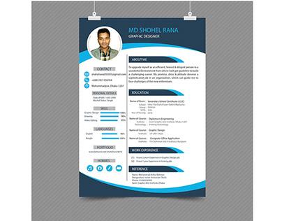 Resume Mockup.... CV