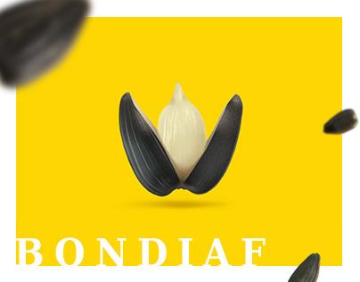 Promo site for Bondiaf - sunflower seeds manufacturer