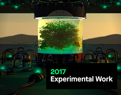 2017 Experimental Work