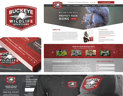 Buckeye Wildlife Solutions