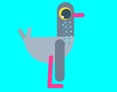 Bird Animation