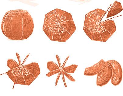 Beyond Canning Recipe Illustrations