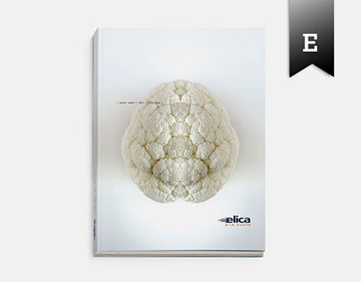 ELICA Annual Report 2010