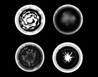 U.C.O — Unidentified Circular Object