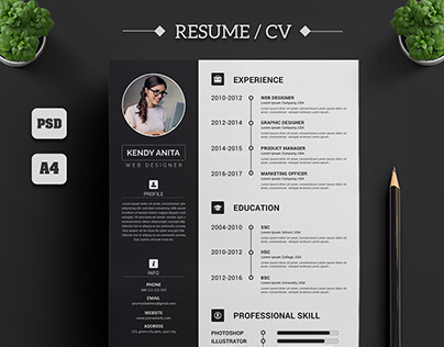 Professional CV / Resume Concept Design vol.1