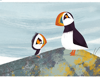 Puffins, crabs & dogs