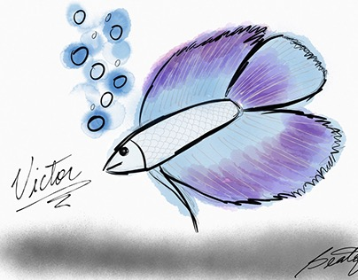 Victor, the Fighting fish