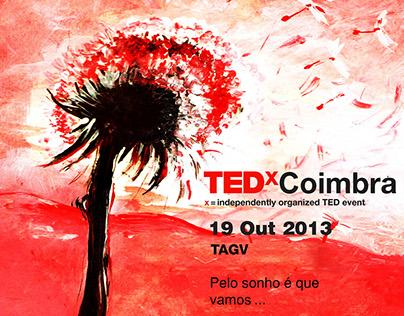 Ted-x Coimbra 2013