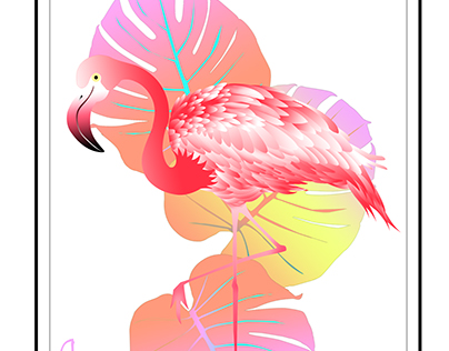 flamingos 火烈鸟