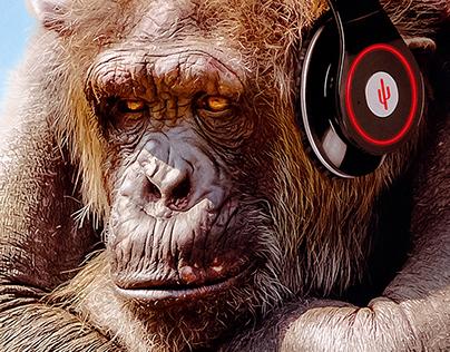 Three Wise Monkeys - Hear, See, Speak