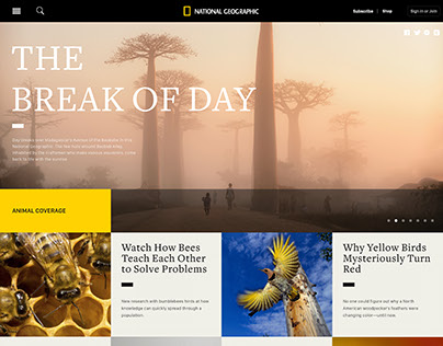 National Geographic website redesign