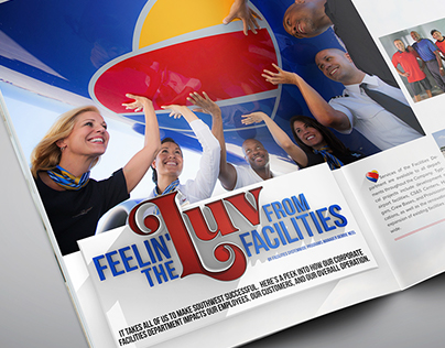 Southwest Airlines Luv Article