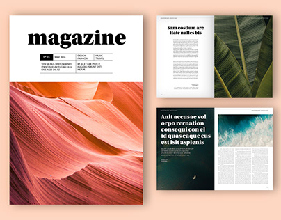 Adobe: Magazine Layout with Gray Accents (Download)