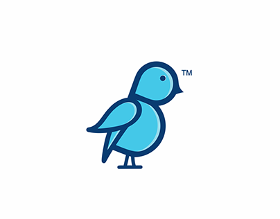 Blue Bird Guidelines & Identity