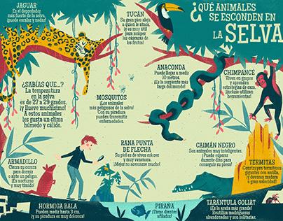 Animals hidden in the jungle