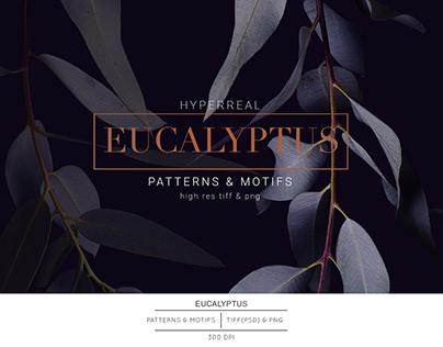 Eucalyptus, Luxury Patterns & Elements!