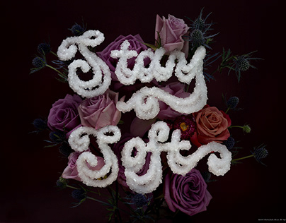 Stay Soft Salt Lettering