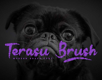 Terasu Brush
