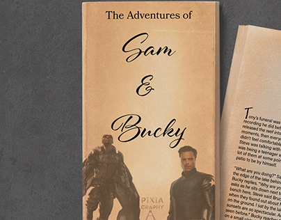 Adventures of Sam and Bucky