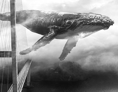 Mega Whale Crossing Bridge